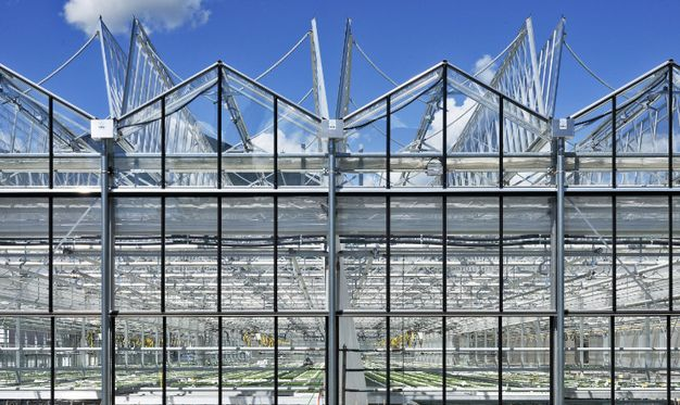 Greenhouse with Cabrio construction