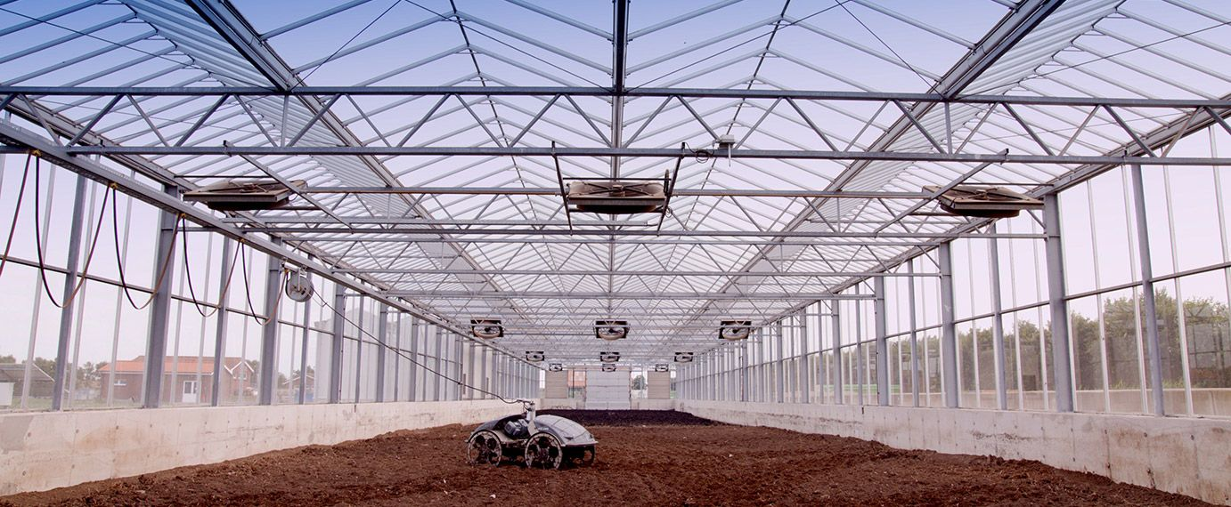 Greenhouses for solar drying
